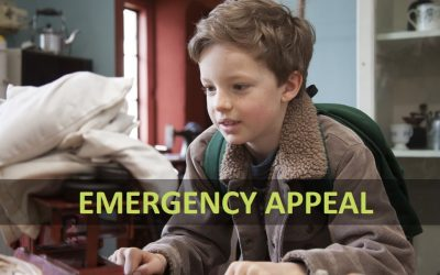 Tiverton Museum Temporary Closure Emergency Appeal